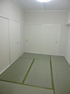2011062525.JPG