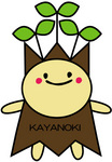 kaya2010.jpg