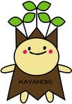 kayanonn6.jpg